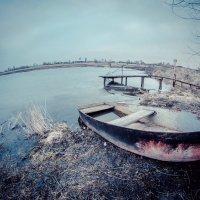 Старый пруд :: Валентин Абрамов