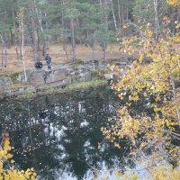 осенняя рыбалка :: натальябонд бондаренко