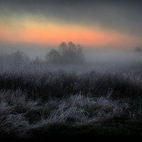 Перед рассветом...3 :: Андрей Войцехов
