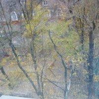 Вот и осень уходит... :: Татьяна Юрасова