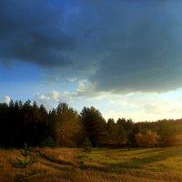 На закате :: лидия Кашицина