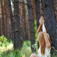 Красоты леса♥ :: Кристина Великанова