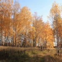 Осень, Воткино :: Владимир Холодницкий