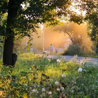Вечер на окраине :: Михаил Кашанин