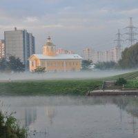 Утренний туман. :: Ольга