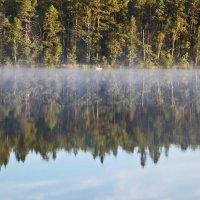 Утренняя рыбалка. :: Анастасия Самигуллина