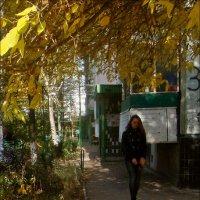 В окружении осени :: Нина Корешкова