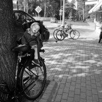 Василий Чекорин - Сладкий сон велосипедиста