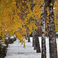 первый снег :: Евгений Фролов