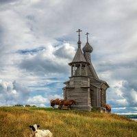 Пастушок :: Евгений Мазилов
