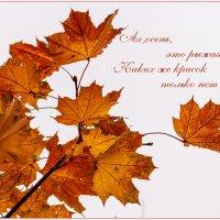 Ах, осень, эта рыжая девица! :: IRinA***