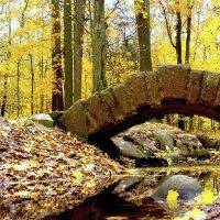 старый мост :: Миша…. просто Миша салавянчик