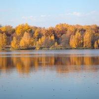 Осеннее утро на озере. :: Снежанна Родионова
