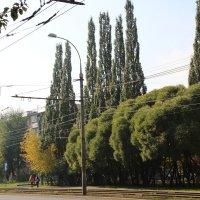 Пермь, бульвар Гагарина :: Елена