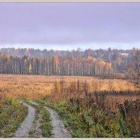 Осень в полях. :: Vadim WadimS67