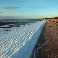 Северодвинск. Белое море, самое начало замерзания :: Владимир Шибинский