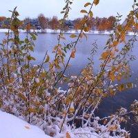 Первый снег :: Татьяна Ломтева