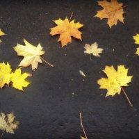 Удивительно листья легли... :: Ольга Кривых
