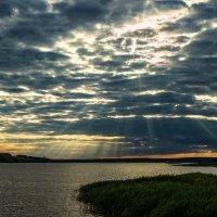 Лучи солнца :: Сергей Волков
