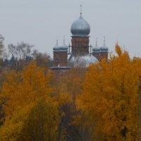 В ярко-жёлтом пламени берез.... :: Galina Leskova