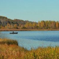 Осень... :: Ирина Никифорова