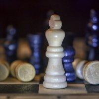 Шахматы :: Михаил Ефимов