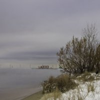 На берегу водохранилища :: Николай
