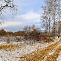 Первый снег :: Юрий Бичеров
