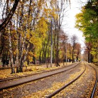 Прощание осени... :: Ирина Князева