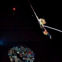 В цирке :: Алиса Бронникова