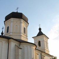 Mănăstirea Căpriana :: Mihail Chiriac