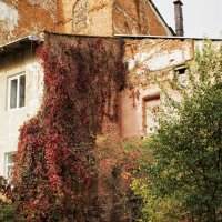 Старый дворик :: Владимир Хижко