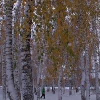 Снег октября :: Татьяна Ломтева