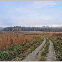 Поворот просёлочной дороги. :: Vadim WadimS67