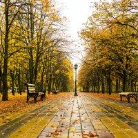 осенний парк :: Katrin Galitsina