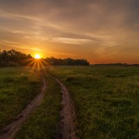Дорога вела к солнцу... :: Moloh.75 Евгений