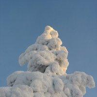 тонны снега держат... :: Елена Павлова (Смолова)