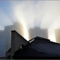 Утренний туман :: Николай Кувшинов