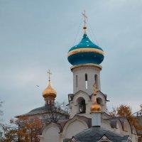 Москва :: Ирина
