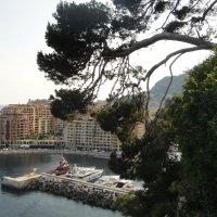 Монако. Вид из Садов Святого Мартина :: Елена Павлова (Смолова)