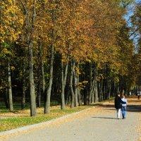 Приятная прогулка! :: Ирина Олехнович