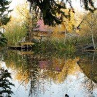 Осенний пруд :: demyanikita
