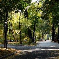 Киев.Осень 2014 г. Фото №15 :: Владимир Бровко