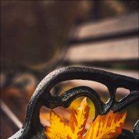 Осень начинается не тогда, когда начинают опадать первые листья или начинаются первые заморозки, а к :: Алексей Латыш