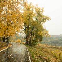 Осенние краски :: Кирилл Антропов