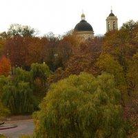 Осенью :: Татьяна Наманюк