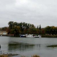 Рыбалке непогода не помеха... :: Тамара (st.tamara)