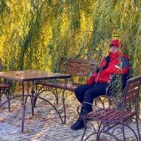 Зайду под сень цветущих ив... :: Ирина Нафаня