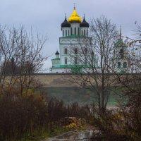 Золото в грязи :: Юрий Шувалов
