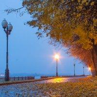 Золотая осень :: Дмитрий
